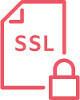 Icon SSL VPN 80 100